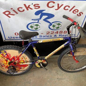 """Retro Raleigh Totally Extreme 24"""" Wheel Mountain Bike. £80"""