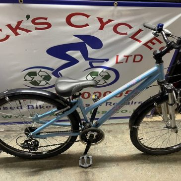 "Dawes Paris 13"" Frame Mountain Bike. £175"