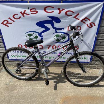 """Raleigh Tantrum 15"""" Frame Ladies/girls Mountain Bike. £100"""